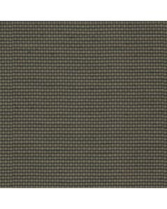 Evelyn Fabric, Charcoal