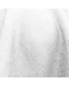Lough Fabric, Snow